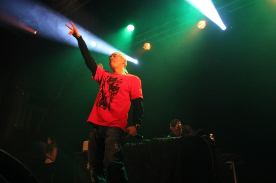 he Mighy Crown Sound System, Live in Marseille , France - Photo : Fred reGGaeLover P. 2013