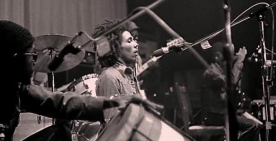 The Wailers 1973