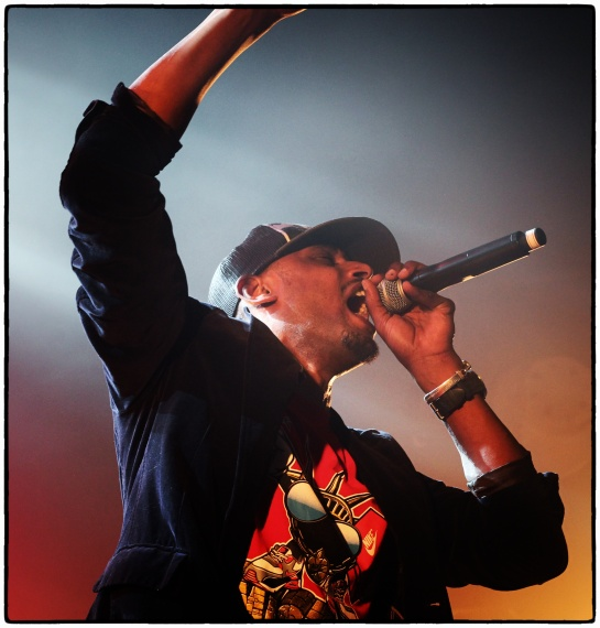 Sir Samuel , live l affranchi , marseille - photo Fred reGGaeLover 2014
