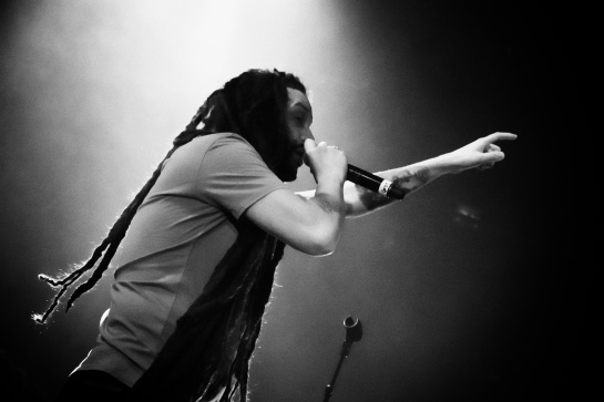 Alborosie and The Shengen Clan Band , Live Le Moulin , Marseille - Photo Fred reGGaeLover 2014