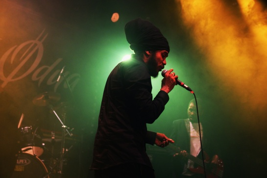 Yaniss Odua & Artikal Band, Live L'Escale Aubagne - Photo : Fred reGGaeLover 2014