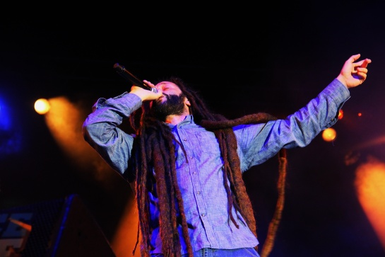 Alborosie & Shengen Clan , live Garance Reggae Festival 2014 - Photo : Fred reGGaelover 2014