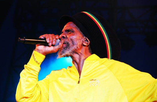 Jah Shaka & Mafia & Fluxy , Live Garance Reggae Festival 2014 - Photo : Fred reGGaeLover 2014