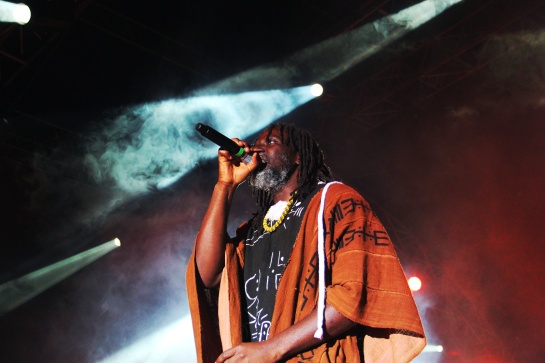 Tiken Jah Fakoly , Live Garance Reggae Festival 2014 - Photo : Fred reGGaeLover 2014