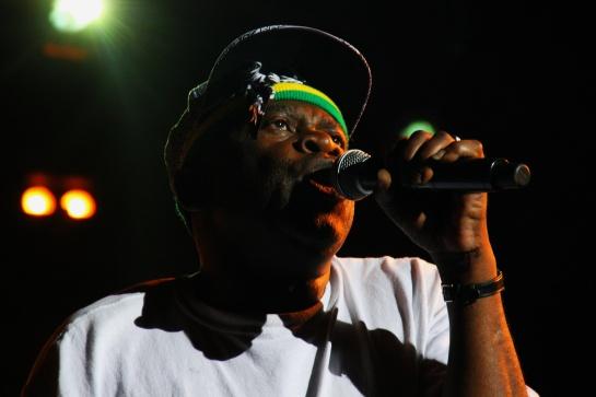 Black Roots , Live Garance Reggae Festival 2014 - Photo Fred reGGaeLover 2014