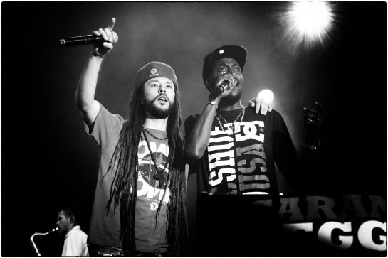Danakil , Live Garance Reggae Festival 2014 - Photo Fred reGGaeLover 2014