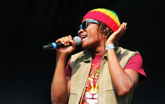 Raging Fyah, Live  Reggae Sun Ska 2014 - Photo : Fred reGGaeLover 2014