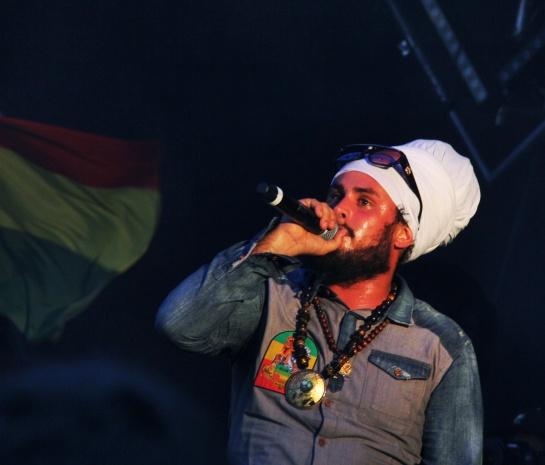 Ilements , Live  Reggae Sun Ska 2014 - Photo : Fred reGGaeLover 2014