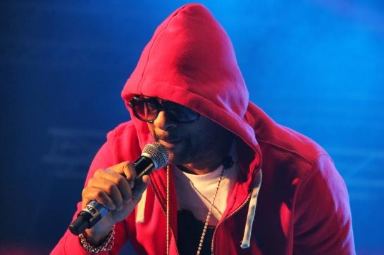 Shaggy, Live Reggae Sun Ska 2014 - Photo : Fred reGGaeLover 2014