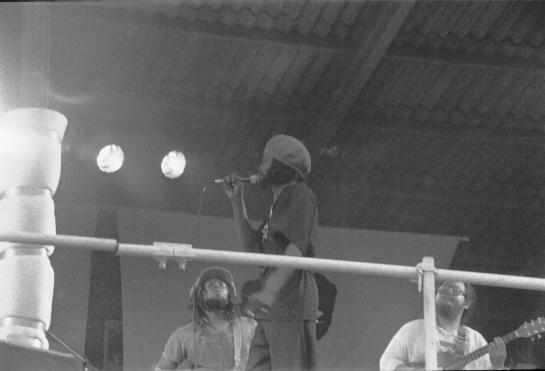 Pink Pop 1979 By Paul Van Haeff