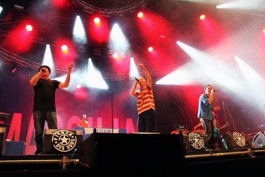 Massilia Sound System, Live Fiesta Des Suds 2014 - Photo : Fred reGGaeLover 2014