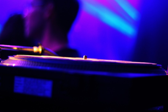 Telerama Dub Festival 12 - Photo Fred reGGaeLover 2014